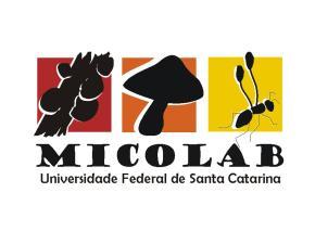 Micolab_Logo